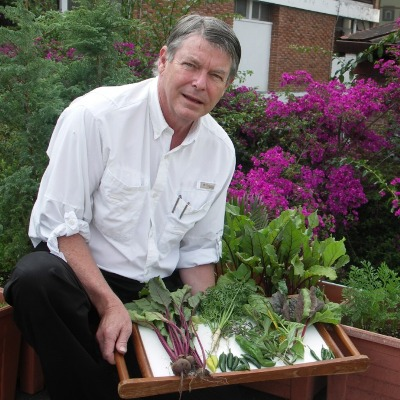 Tim Magee's first harvest from rooftop garden.