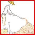 Man digging vegetable garden bed.