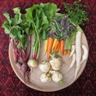 Harvest photo of root crops from Tim Magee's garden.