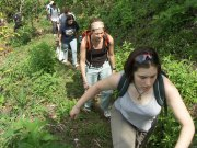 Students hike with a wildlife biologist through a cloud forest during a Guatemala Expedition