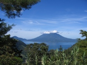 View of a volcano through the forest in Guatemala.